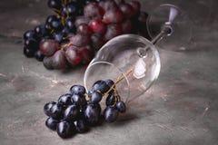 Fondo horizontal del fondo de la copa de vino roja y de la uva roja con la uva roja y la copa de vino Foto de archivo libre de regalías