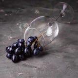 Fondo horizontal del fondo de la copa de vino y de la uva roja con el cuadrado de la uva roja y de la copa de vino Foto de archivo libre de regalías