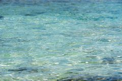 Fondo - il fondale marino attraverso la chiara acqua scintillante Copi lo spazio per testo Immagini Stock Libere da Diritti
