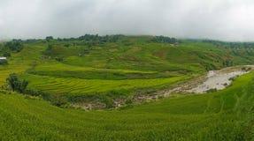 Fondo impressionante del paesaggio della natura di estate con i terrazzi del riso Fotografie Stock