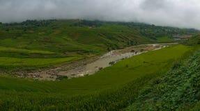 Fondo impressionante del paesaggio della natura di estate con i terrazzi del riso Fotografia Stock Libera da Diritti