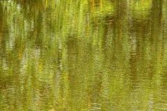 Fondo impressionista verde Fotografia Stock Libera da Diritti
