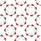 Fondo incons?til con el marco redondo de la amapola roja vertical libre illustration