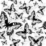 Fondo inconsútil con la mariposa Fotografía de archivo libre de regalías