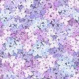 Fondo inconsútil con las flores de la lila Ilustración del vector ilustración del vector