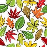 Fondo inconsútil con las hojas de otoño Fotografía de archivo