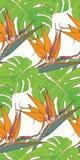 Fondo inconsútil con las hojas de palma y las flores tropicales Fotos de archivo libres de regalías