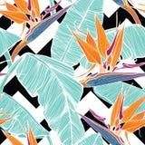 Fondo inconsútil con las hojas de palma y las flores tropicales Fotografía de archivo libre de regalías