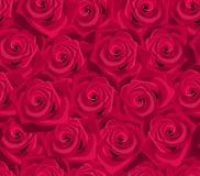 Fondo inconsútil con las rosas rojas. stock de ilustración