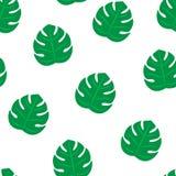 Fondo inconsútil de hoja de palma del modelo Papel pintado inconsútil del modelo de la playa de hojas tropicales de los árboles d libre illustration