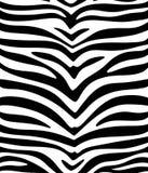 Fondo inconsútil de la piel del tigre Imagen de archivo