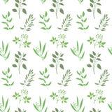Fondo inconsútil de la planta del vector Modelo sin fin con la silueta verde de las ramitas y de las hojas Fotografía de archivo libre de regalías