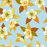 Fondo inconsútil de la primavera con las flores blancas con las hojas del verde y del amarillo Imagenes de archivo