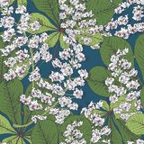 Fondo inconsútil de la primavera de la castaña del flor Fotografía de archivo libre de regalías