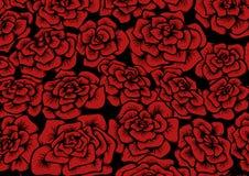 Fondo inconsútil de la rosa del rojo Fotografía de archivo