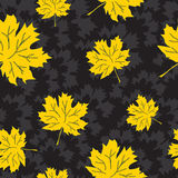 Fondo inconsútil de las hojas de otoño del vector Imagen de archivo