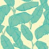 Fondo inconsútil de las hojas de palma tropicales Fotografía de archivo libre de regalías