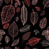 Fondo inconsútil de las hojas del otoño que cae Fotografía de archivo libre de regalías