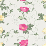 Fondo inconsútil de las rosas Fotografía de archivo libre de regalías