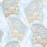 Fondo inconsútil del mar con contornos de la cáscara Fotos de archivo libres de regalías