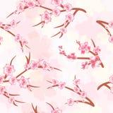 Fondo inconsútil - flores de cerezo Ramas de los blos de una cereza Imágenes de archivo libres de regalías