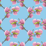 Fondo inconsútil hermoso con las ramas de árbol florecientes de la magnolia Imagen de archivo