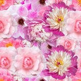 Fondo inconsútil rosado con diversos colores Imagen de archivo