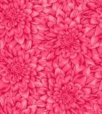 Fondo inconsútil vertical hermoso con la dalia rosada Fotos de archivo libres de regalías