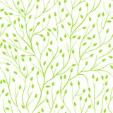 Fondo inconsútil hermoso con las ramas de árbol Tarjetas de felicitación del fondo e invitaciones perfectas a la boda, cumpleaños Fotografía de archivo