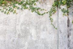 Fondo incrinato del muro di cemento, vecchia parete grungy immagini stock libere da diritti