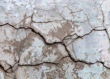 Fondo incrinato del pavimento del cemento di struttura della parete Fotografia Stock