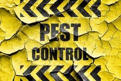 Fondo incrinato di controllo dei parassiti di lerciume Immagine Stock Libera da Diritti