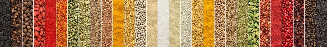 Fondo indio del condimento collage de especias y de hierbas para el foo imagen de archivo libre de regalías