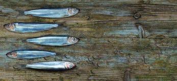 Fondo invecchiato tavola di legno baltica degli spratti dell'aringa Fotografie Stock