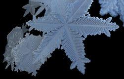 Fondo isolato neve di caduta di Natale Modello del fiocco della neve di natale Struttura delle precipitazioni nevose Contesto 3d  illustrazione di stock