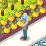 Fondo isométrico del alimento biológico libre illustration