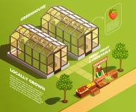 Fondo isometrico dell'azienda agricola Fotografie Stock