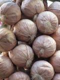 Fondo italiano viola della treccia dell'aglio La Toscana, Italia fotografia stock