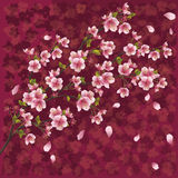 Fondo japonés con el flor de sakura stock de ilustración