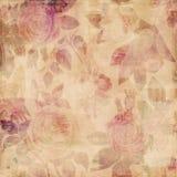 Fondo lamentable de las rosas botánicas sucias de la vendimia Fotografía de archivo libre de regalías