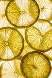 Fondo leggero con gli agrumi delle fette del limone, fondo immagini stock
