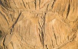 Fondo leggero naturale - fine della palma su immagine stock libera da diritti
