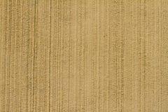 Fondo ligero de la textura de la pared del estuco del umber Imagen de archivo