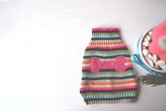 Fondo lindo con el suéter para el perro Tienda del parque zoológico Imagen de archivo