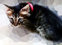 Fondo lindo de Kitten Smudge Painting With Pixelate Fotografía de archivo