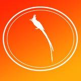 Fondo Logo Banner di immagine del pigliamosche di Paradise dell'asiatico dell'uccello illustrazione di stock