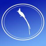 Fondo Logo Banner di immagine del pigliamosche di Paradise dell'asiatico dell'uccello illustrazione vettoriale