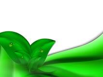 Fondo luminoso astratto di estate con le foglie verdi e le bande orizzontali verdi Fotografie Stock Libere da Diritti
