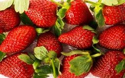 Fondo luminoso con le fragole succose rosse fresche Fotografia Stock Libera da Diritti