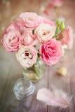 Fondo luminoso con le rose e la piuma Immagini Stock Libere da Diritti
